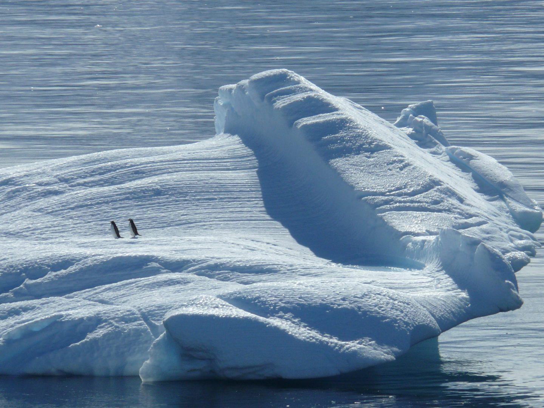 Bucketlist: op reis naar de Noordpool of de Zuidpool