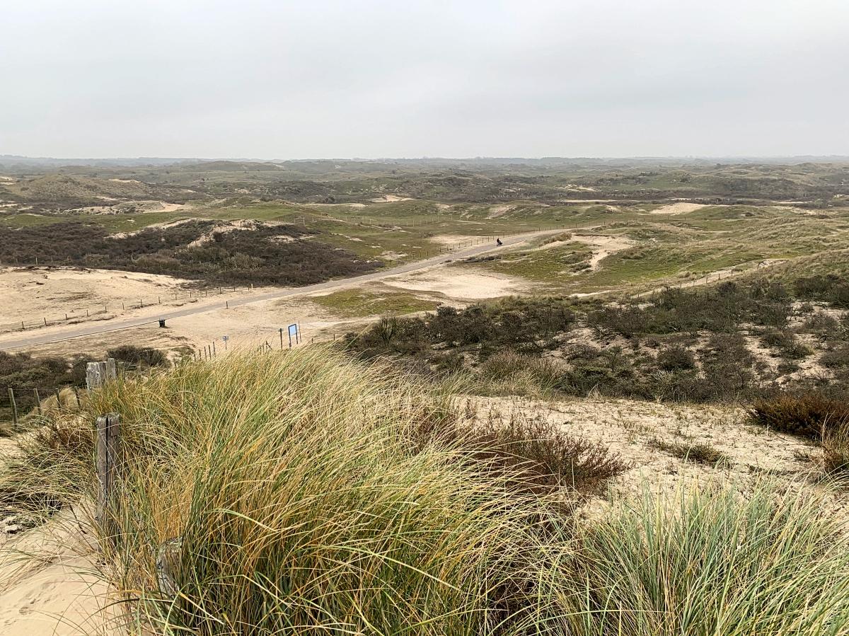 Zandvoort aan Zee Kennemerduinen