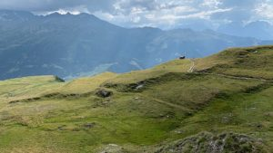 Verbier alpenweide hoogvlakte in de Zwitserse Alpen