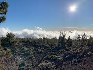 Rijden op Tenerife: boven de wolken! In Nationaal Park de Teide